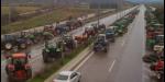 Фермеры Болгарии больше не протестуют