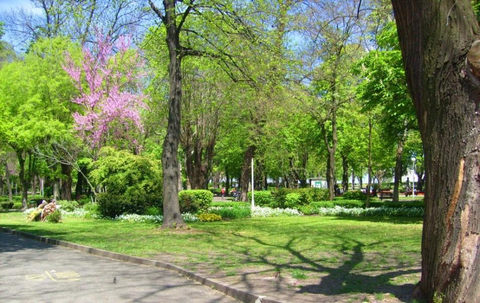 Бургас Болгария - Приморский парк