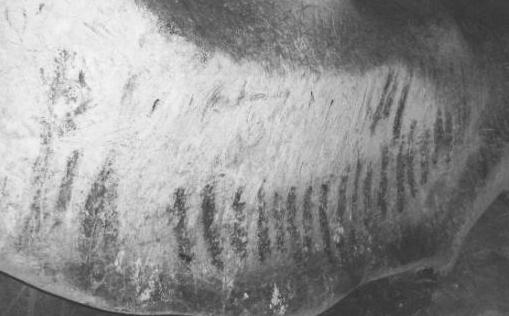 Подробное исследование рисунков в Магуре