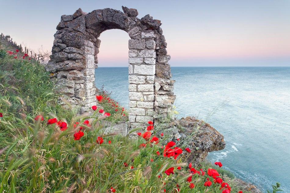 30 самых феноменальных фото - цветущий мыс Калиакра