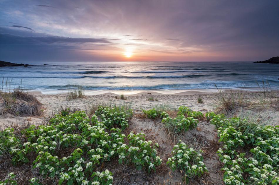 30 феноменальных фотографий - Синеморец пляж и море
