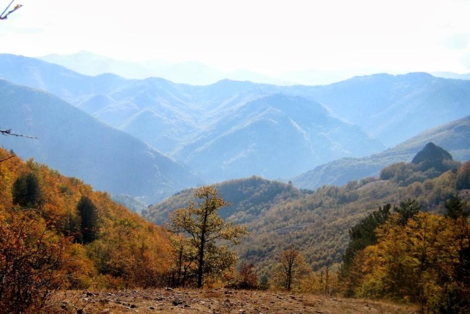 крестовая гора фото