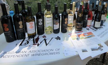 Вина в Болгарии фото