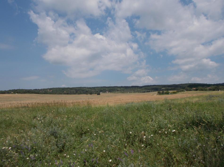 Село Аксаково природа