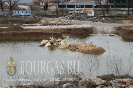 вот такой сейчас олимпийский бассейн, нормы ГТО тут точно сдать не получится
