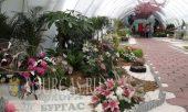"""В Бургасе пройдет Национальная выставка цветов - """"Флора Бургас 2015"""", международная выставка Флора Бургас"""