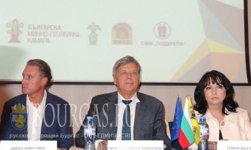 Болгария пока не определилась с Южным потоком