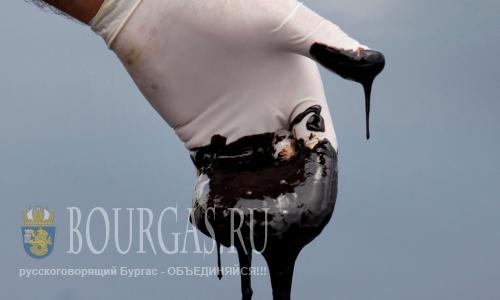 В Варне создадут центр по контролю за разливом нефти