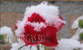 Болгария София - выпал первый снег, морозам и снегопадам в Болгарии