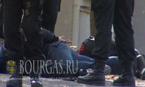 В Болгарии провели массовую зачистку