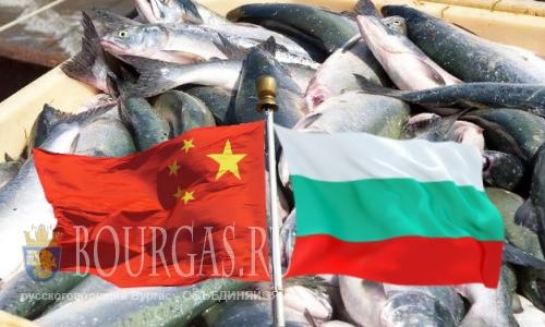 Рыбные продукты из Болгарии придут в Китай
