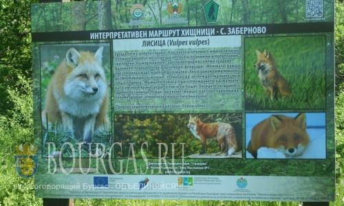 Парк Странджа уже готов к приему туристов