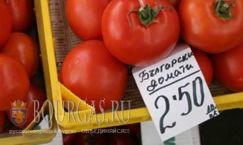 Помидоры в Болгарии выращивать не выгодно