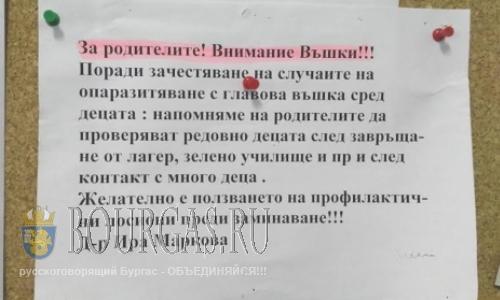 Вши мешают детям в Софии нормально жить?