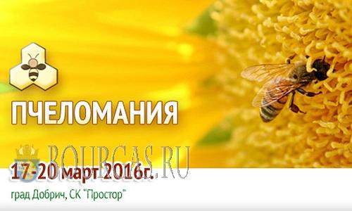 Выставка Пчеломания 2016 пройдет в Добриче