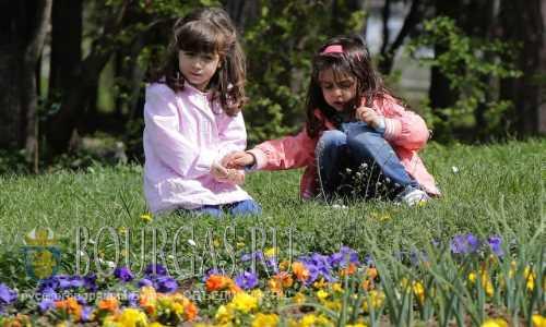 Детей в Болгарии больше не становится
