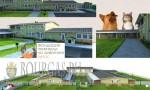 В Бургасе построят центр для бездомных животных