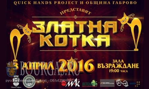 В Габрово проходит фестиваль - Златна котка