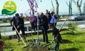 В Поморие провели акцию - Поморие - мой зеленый город