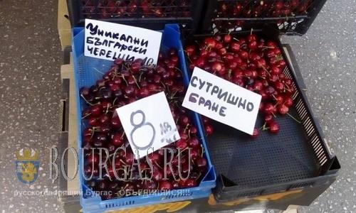 Болгарская черешня 2016, цены - космос