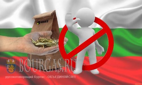 Сбор липового цвета в болгарском Сливене под запретом