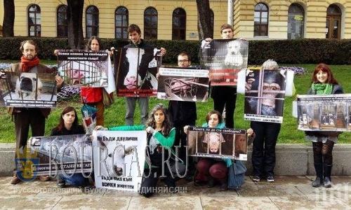 В Болгарии пройдет протест Мясо это убийство