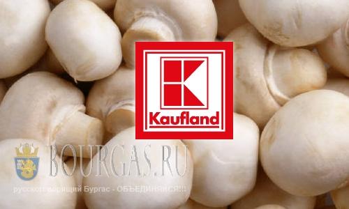 На болгарский пищевой рынок попали ядовитые грибы
