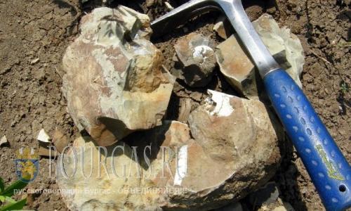 В Поморие будут искать полезные ископаемые