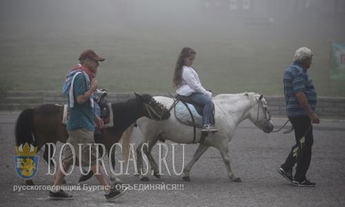 16 июля 2016 года Болгария в фото, Боровец - мулы катают детей