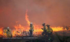 31 июля 2016 года, Болгария, Вся страна в огне пожаров