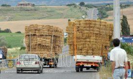 Болгария на фото - 14 июля 2016 года, Хасково Кырджали, дорога