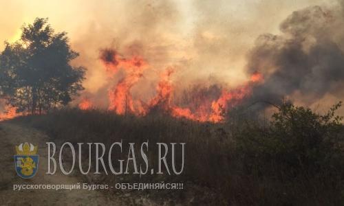 горит трава вокруг Бургаса