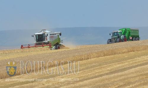 В Болгарии заканчивают уборку зерновых