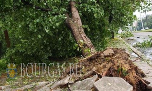 В болгарском городе Русе устраняют последствия урагана
