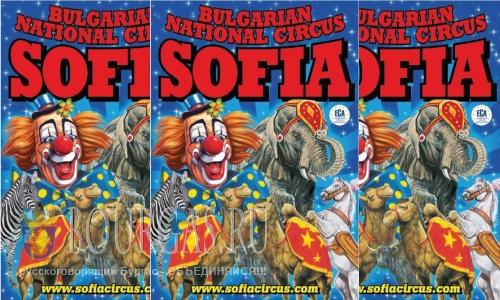 Цирк Софии на гастролях в Бургасе