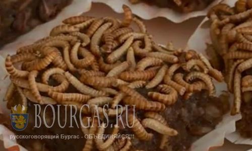 Кулинарные предпочтения болгар меняются