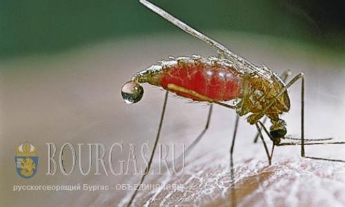 малярия в Болгарии