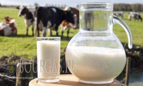 молоко в Болгарии, болгарское молоко, молочные продукты в Болгарии, болгарские молочные продукты