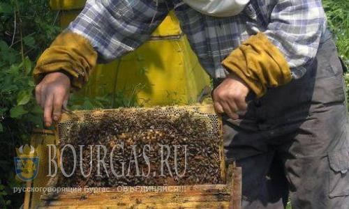 пчеловоды Болгарии, болгарские пчеловоды