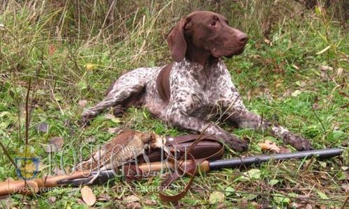 В Болгарии открывается сезон охоты