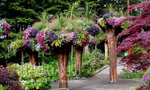 В Бургасской области появится свой ботанической сад