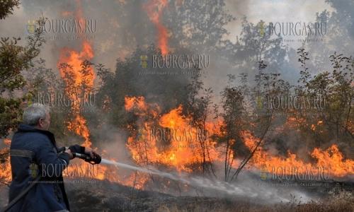 12 сентября 2016, Хасковский регион, пожар между селами Кралево и Малык Извор полыхал на 500 гектарах