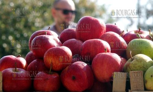 12 сентября 2016, Пловдив, на Центральной площади заработал фермерский рынок