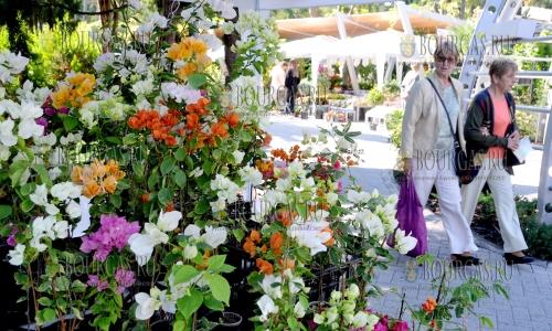 24 сентября 2016 года, Бургас, экспо центр Флова-Бургас - работает выставка цветов и сопутствующих товаров
