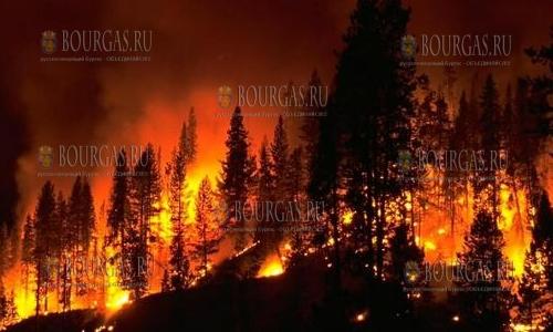 пожары в Болгарии