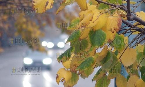 25 октября 2016 года, в Пловдиве в права вступила осень