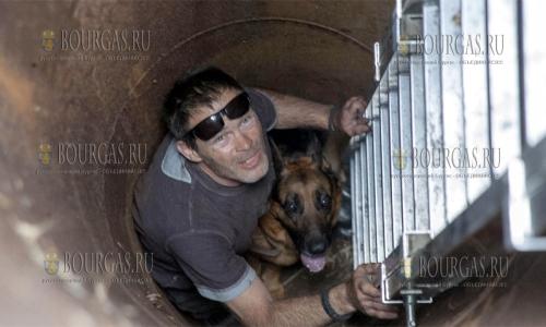 3 октября 2016 года, София, спасатели спасли жизнь собаки, которая провалилась в 6-ти метровую яму