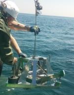 болгарские ученые исследуют моллюсков