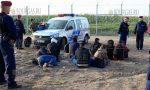 Дорогами Румынии бредут нелегалы из Болгарии
