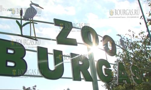 зоопарк Бургаса, в зоопарке Бургаса